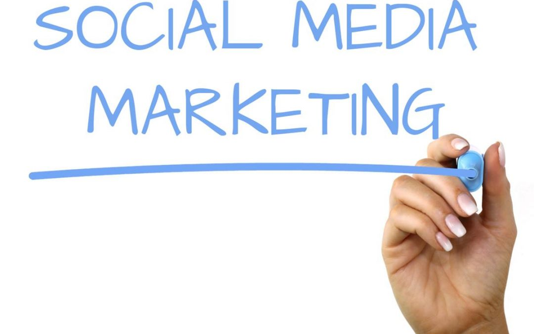 Social Media & Marketing or Google Search?